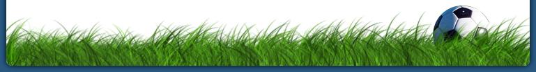 Ballon dans l'herbe