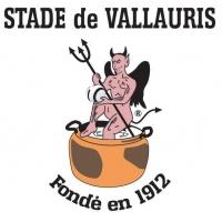 Logo du Stade